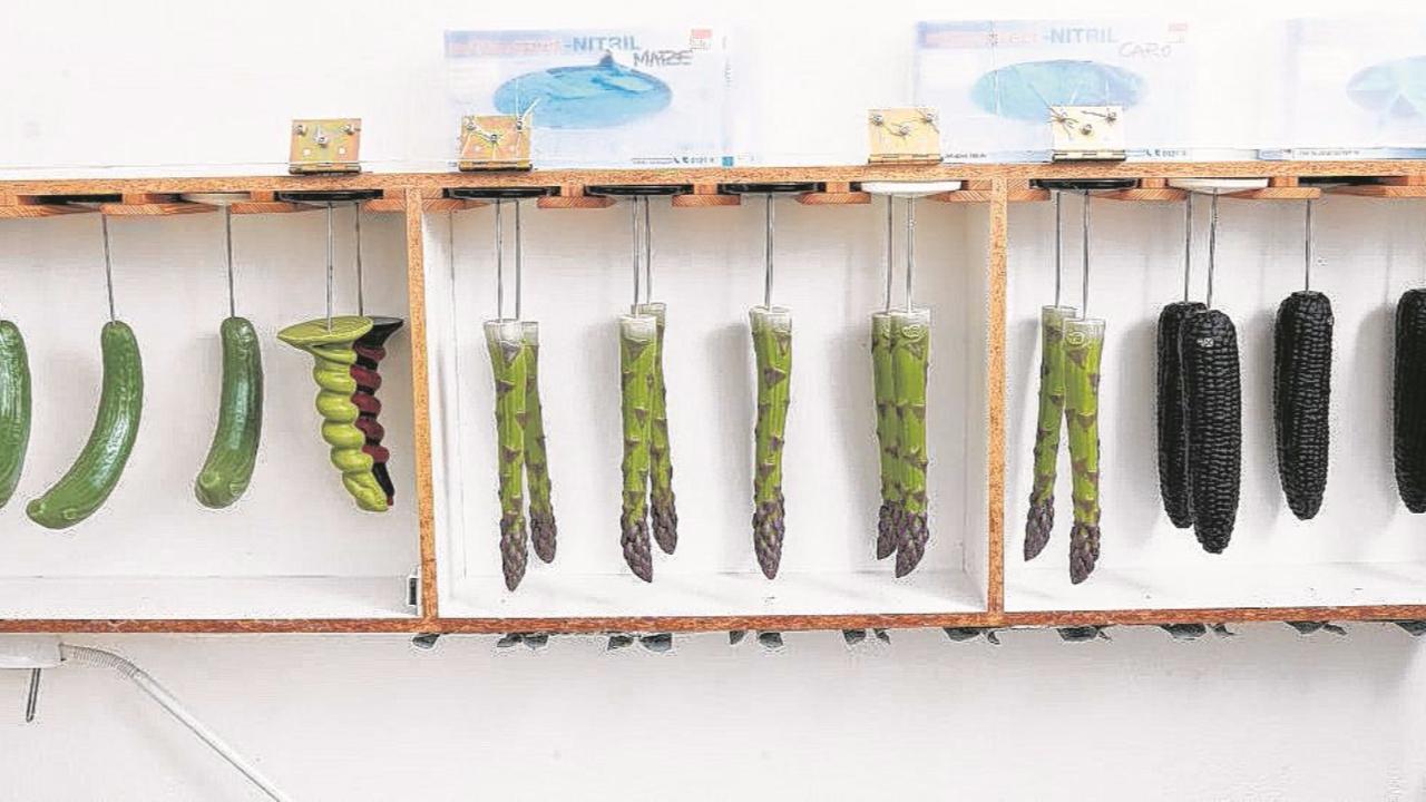 """In der """"Voegelei"""" sollen u.a. die Gemüse-Dildos von SelfDelve aus Dresden verkauft werdenFoto: Dirk Sukow"""