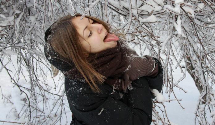 x hamster winter
