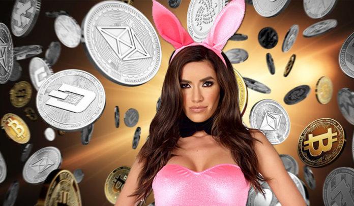 bunny coin