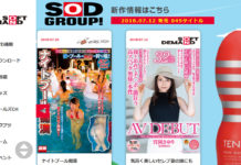 sod group