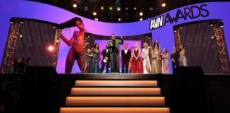 AVN Award gewinner 2020