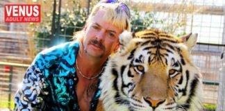 tiger king adult video
